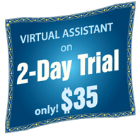 Online Virtual Assistants